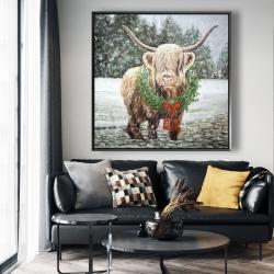 Framed 48 x 48 - Highland christmas cow