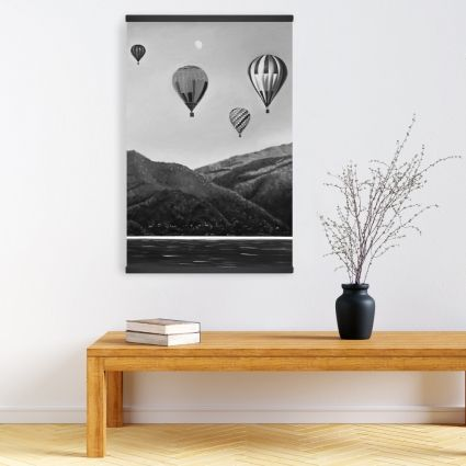 Air balloon landscape
