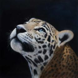 Realistic leopard face