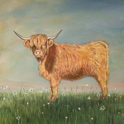 Daisy the highland cow