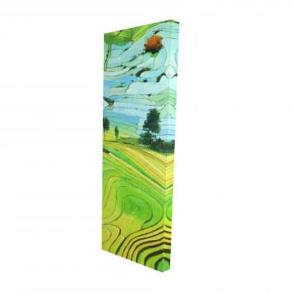 Rice fields of vietnam