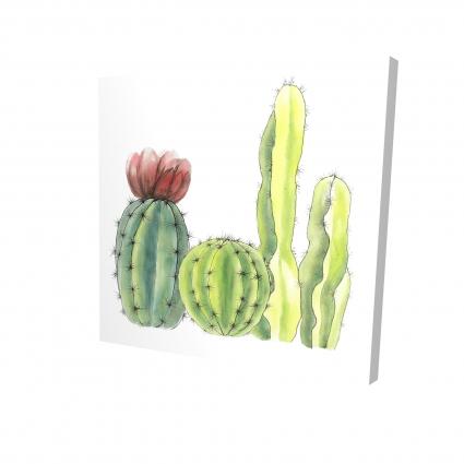 Four little cactus