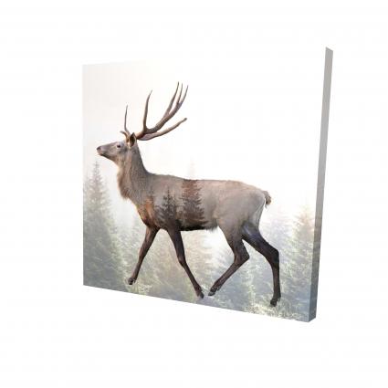 Large plume roe deer